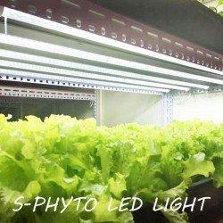 Фитоосвещение S-PHYTO LED LIGHT